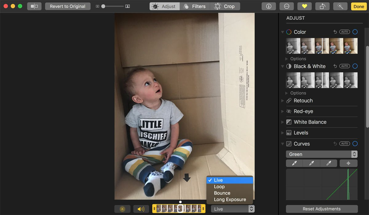 How to use Photos app for Mac: Turn a Live Photo into a GIF
